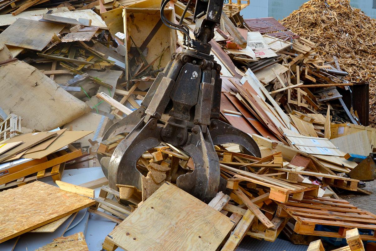 Holz-entsorgen-Neumuenster.jpg